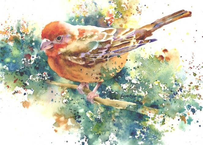 Finch Friend by Susan Crouch Watercolors.  Beautiful.