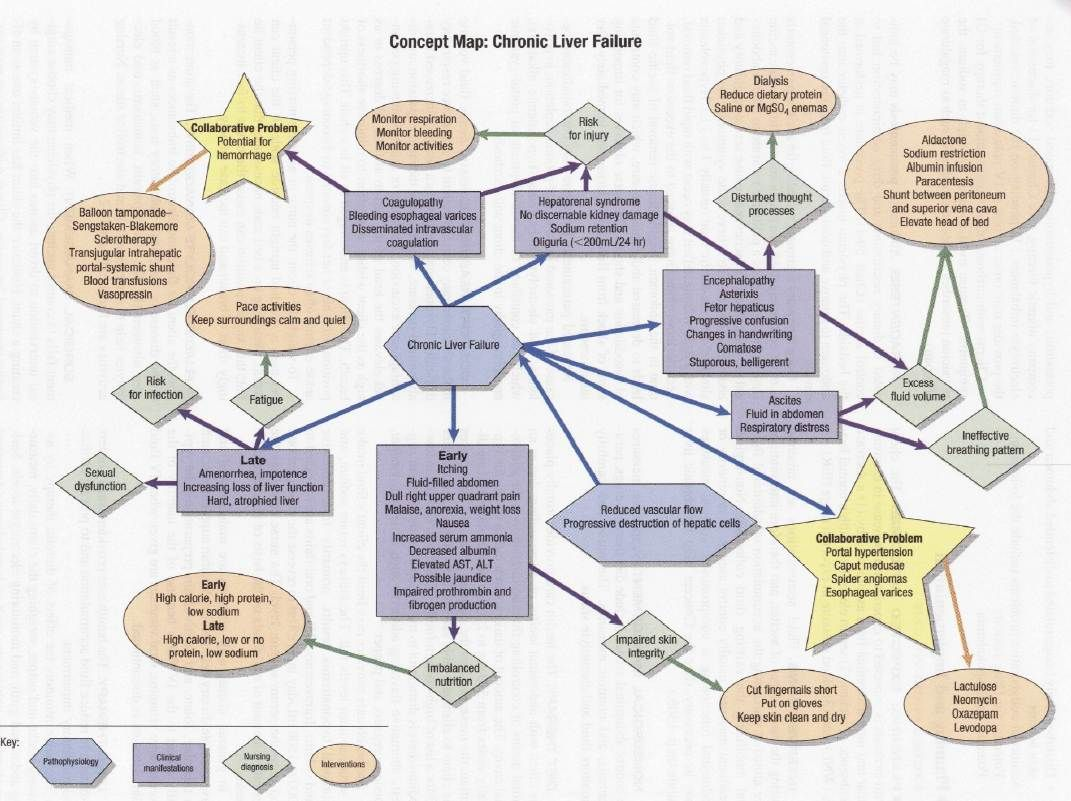 Concept Map For Chronic Liver Failure
