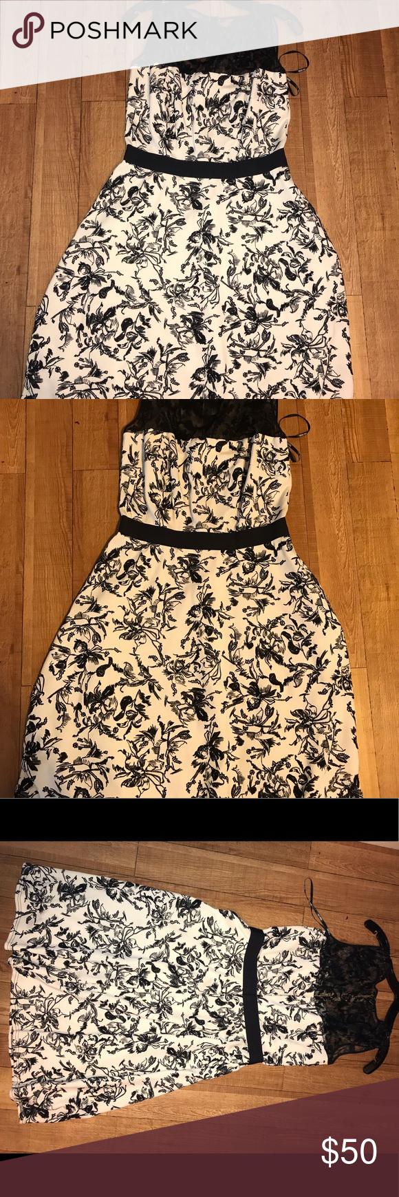 Tadashi Shoji Black White Dress W Lace Embroidery Embroidery Dress White Embroidery Dress Tadashi Shoji Dresses [ 1740 x 580 Pixel ]