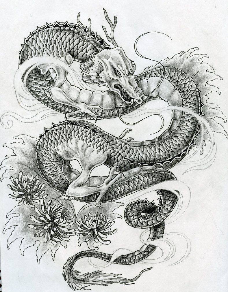 Free Japanese Tattoos Designs Dragon Tattoos For Men Japanese Dragon Tattoo Dragon Tattoo