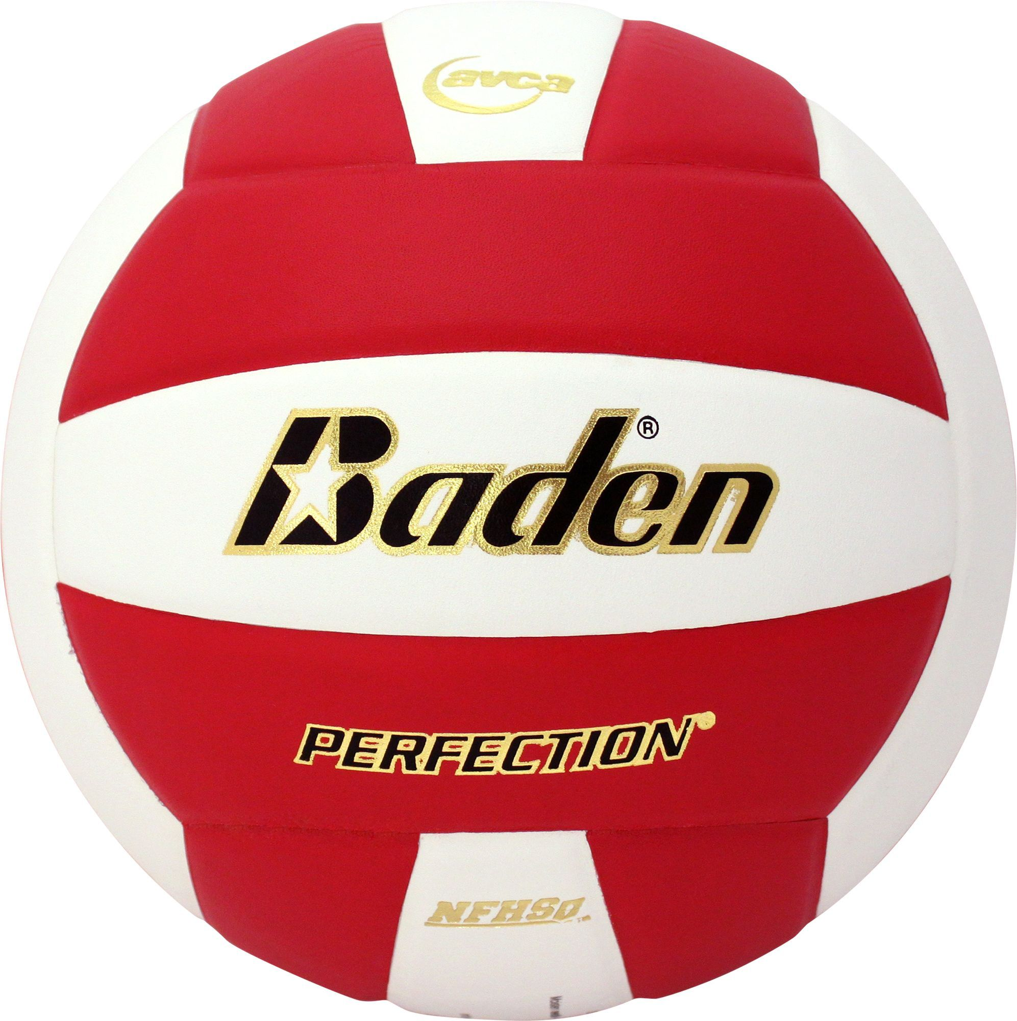 Baden Perfection Elite Series Indoor Volleyball Volleyball Leather Personal Defense