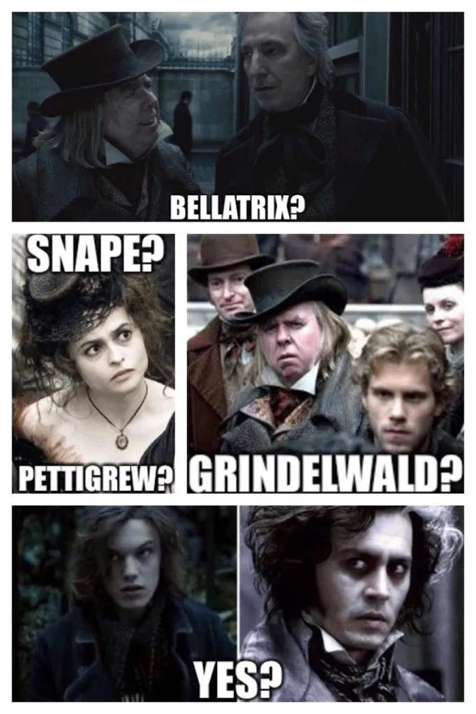 Harry Potter Memes For Kids Harry Potter Memes Harry Potter Goblet Harry Potter Cast