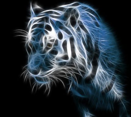 Superb Tiger Abstract Animal Tiger Wallpaper Cool Desktop Download Free Architecture Designs Embacsunscenecom
