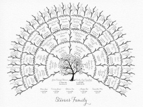 Geneology Family History Fan Chart 5 Generations by