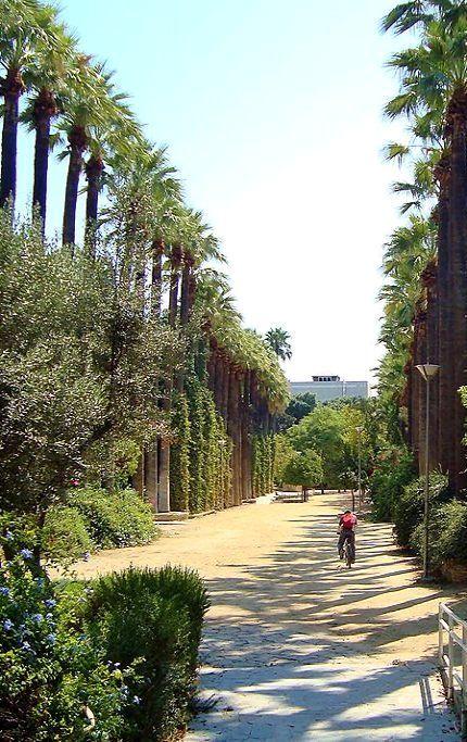 Nicosia Municipal Gardens Republic Of Cyprus Municipal Gardens Cyprus Nicosia