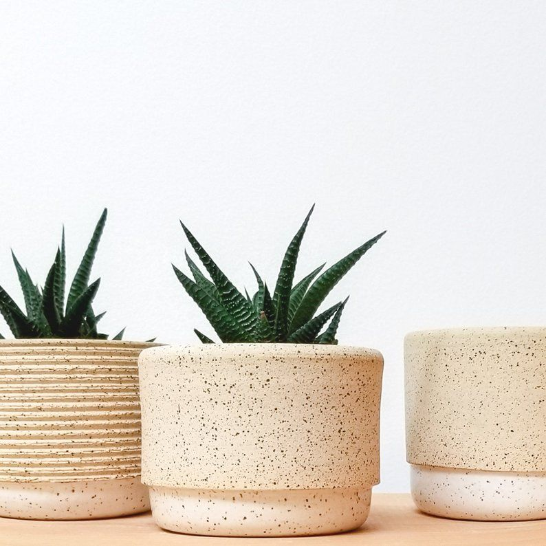 Ceramic Planter Succulent Pot Minimalist Planter White Plant Etsy Succulent Pots Ceramic Planters Pottery Pots