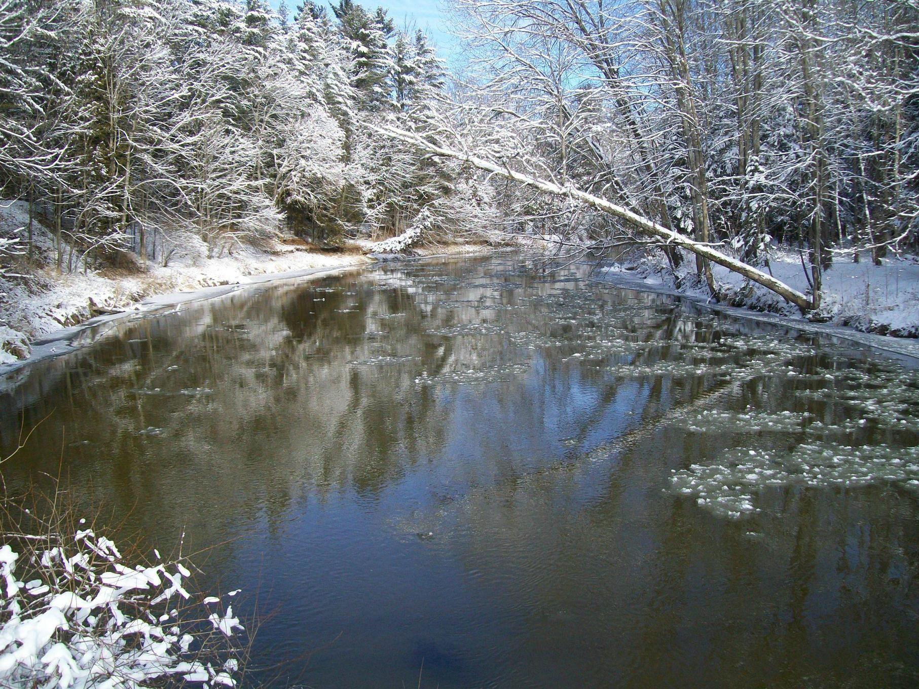 The Rifle river, Standish Michigan.[OC][3664x2748]