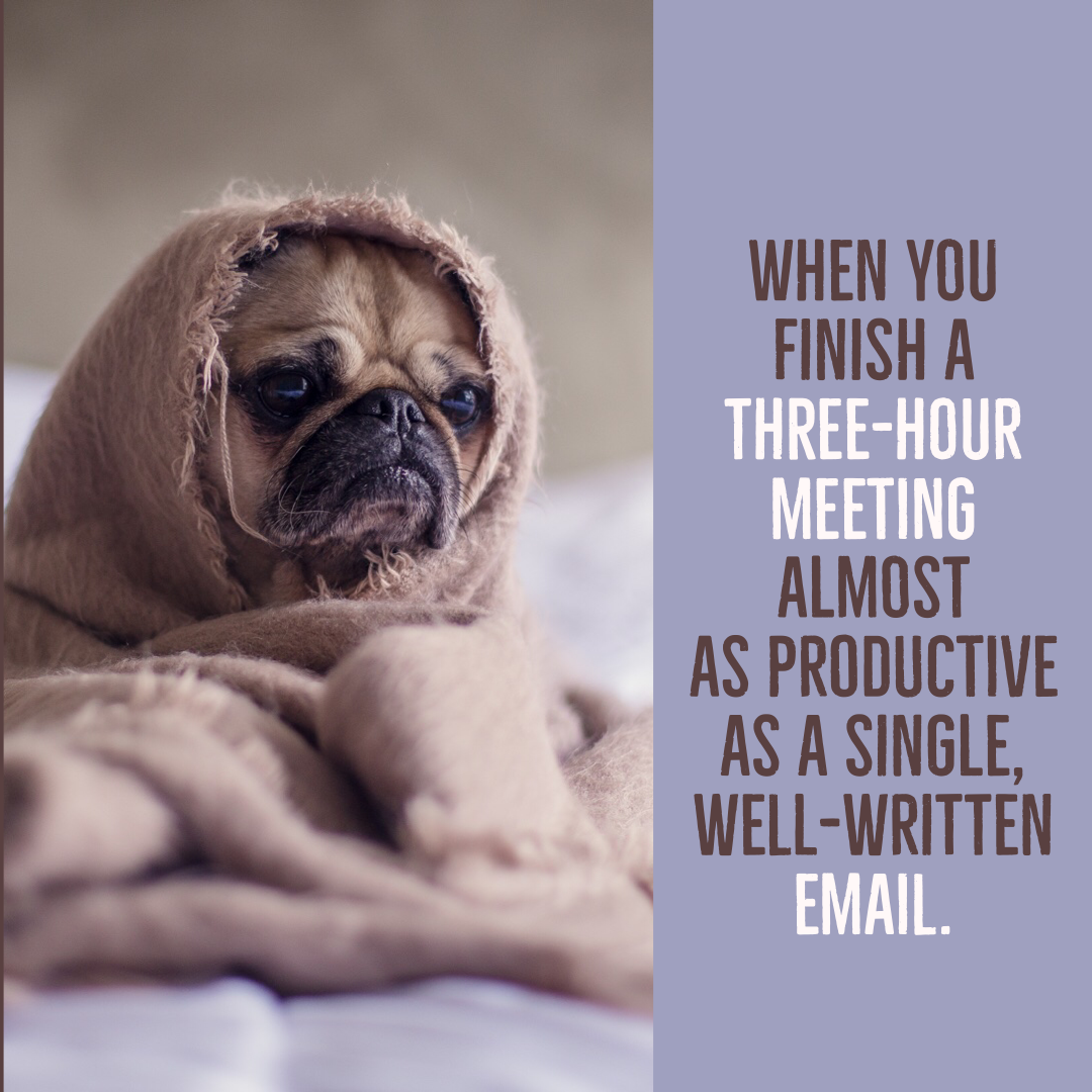 Business Meetings Be Like Sleep Quotes Funny Sleep Quotes Cant Sleep Funny