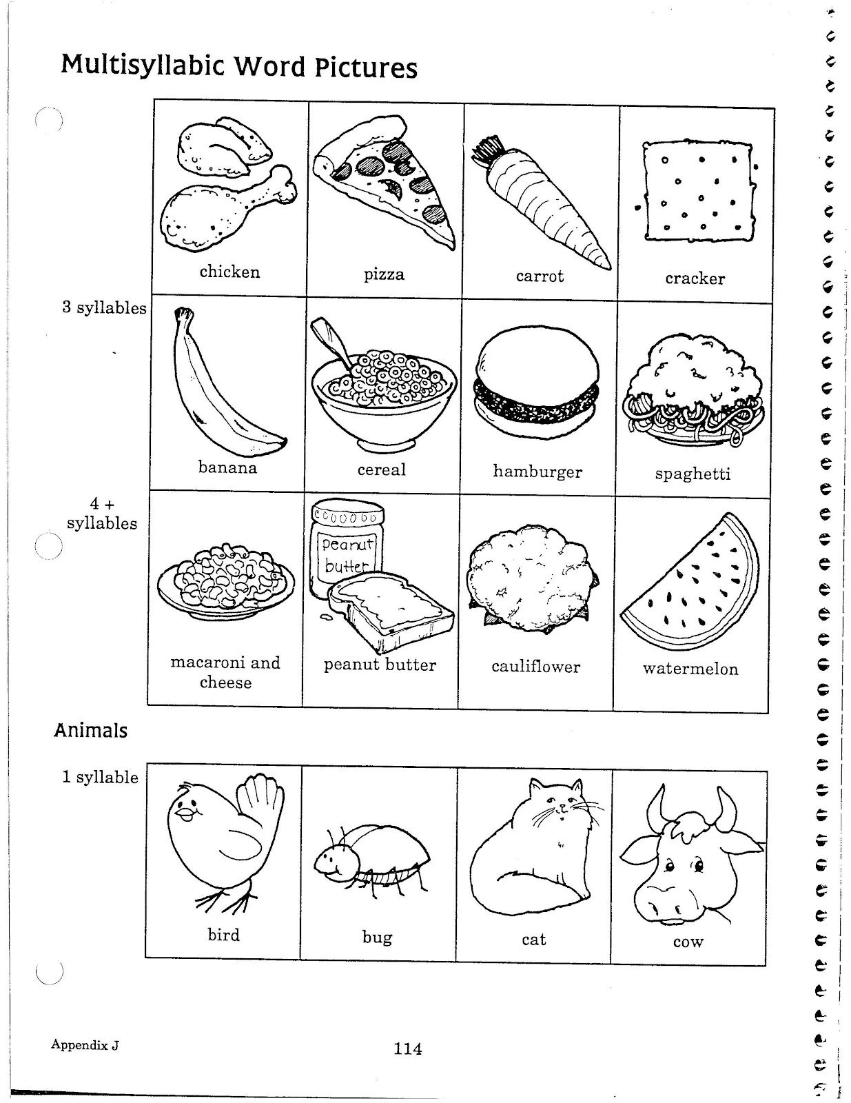 Multiple Syllable Food Words