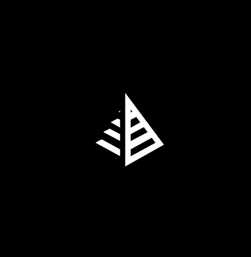 Triangle Logo Projects Photos Videos Logos Illustrations And Branding On Behance Branding Design Logo Project Photo Logo Design
