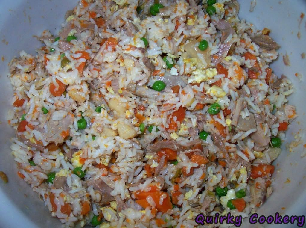 Homemade dog food make it portion it freeze it win quirky make your own homemade dog food with rice meat vegetables carrots peas forumfinder Image collections