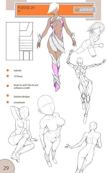Photo body female muscles help grid pose perspective bird anatomy ...