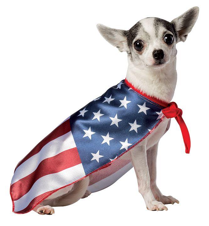 Dog Flag Usa Xs Halloween Party Event Costumes Dog Flag Usa