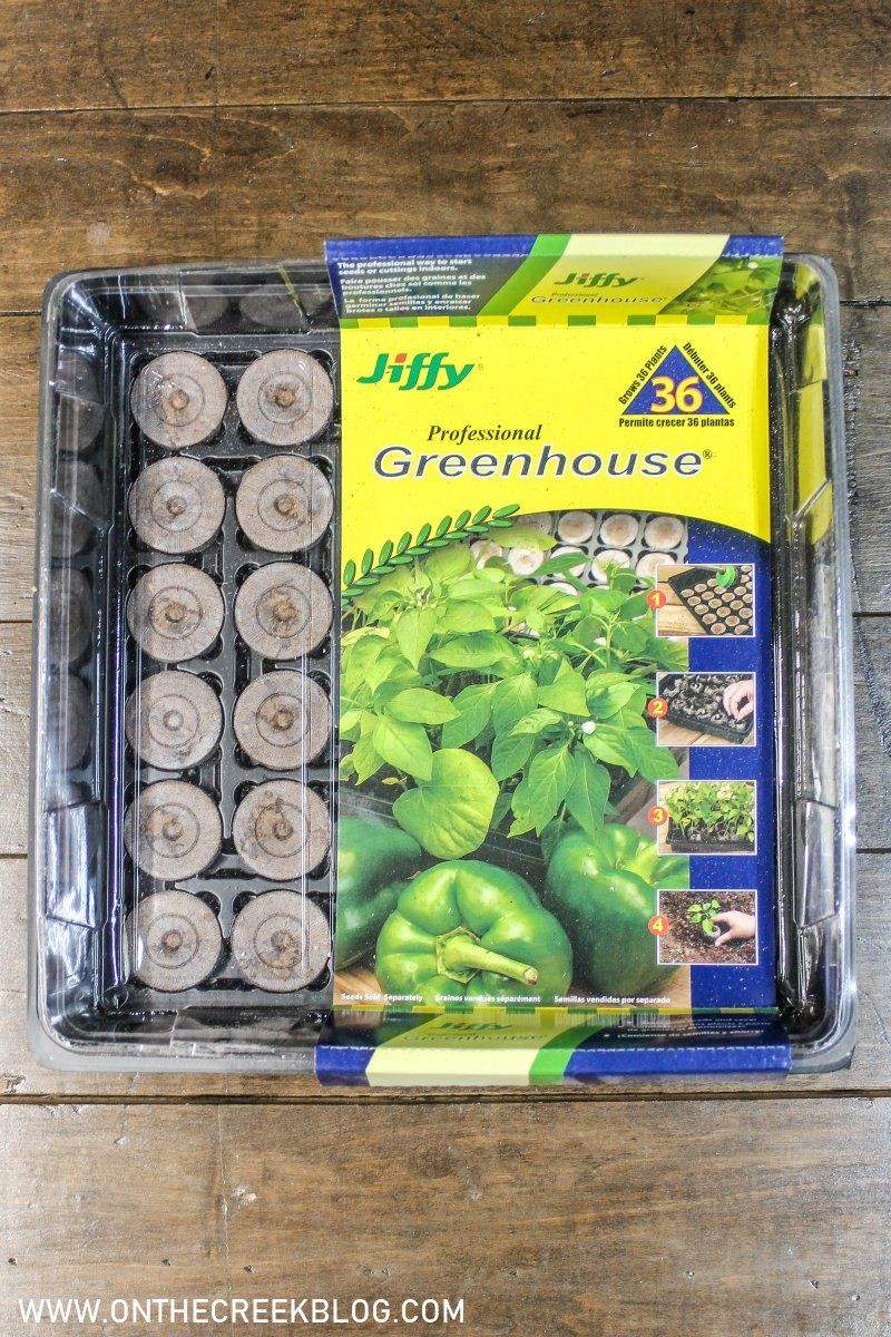 Seed starting using the Jiffy Professional Greenhouse #garden #gardening #seeds #seedstarting #gardenplanting #gardenseeds #homesteading #homesteader #farming