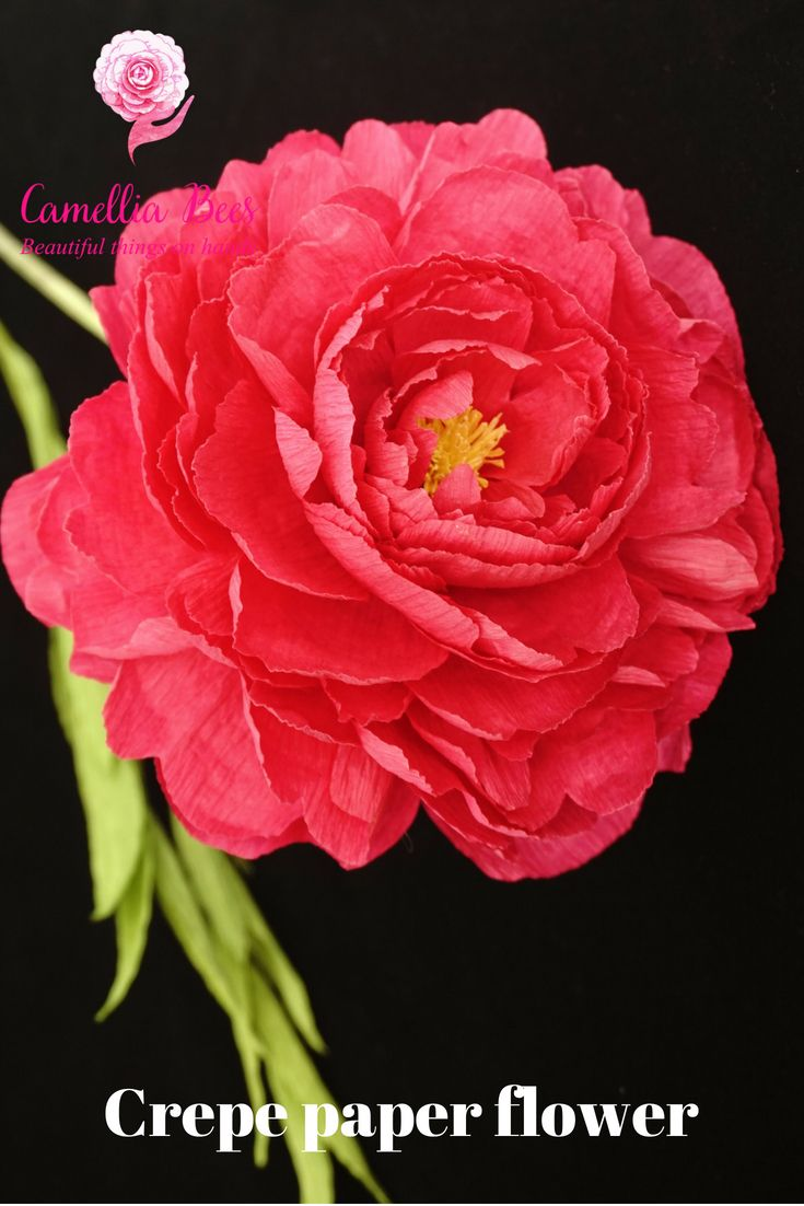 Diy Crepe Paper Flower How To Make Paper Peony Flower Inter 1