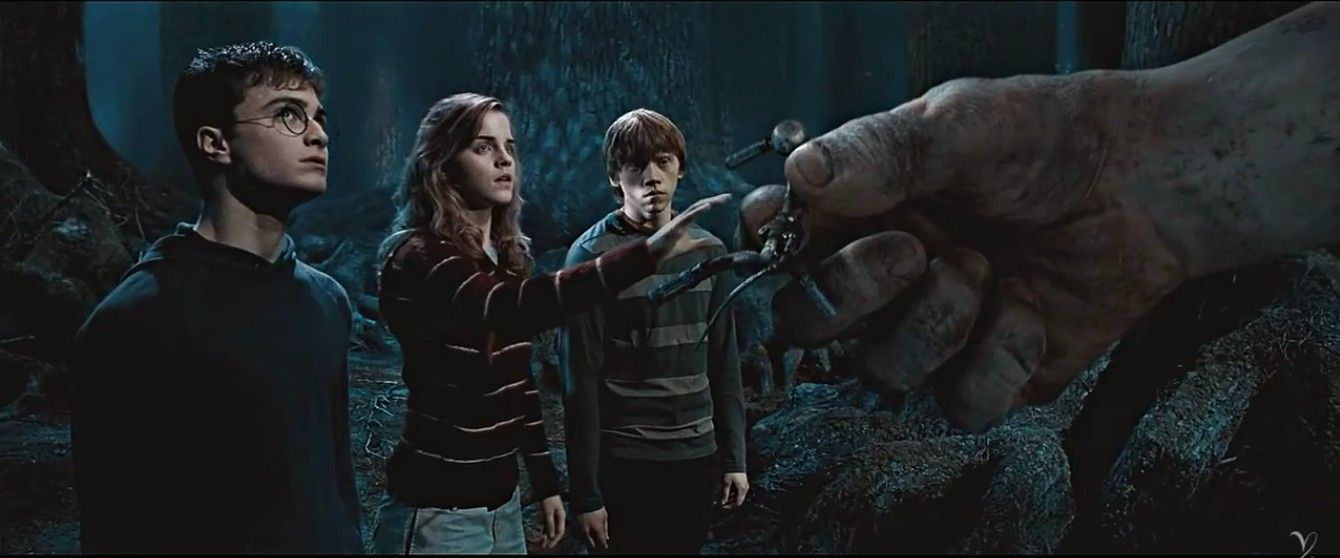 The Golden Trio Harry Potter Potter