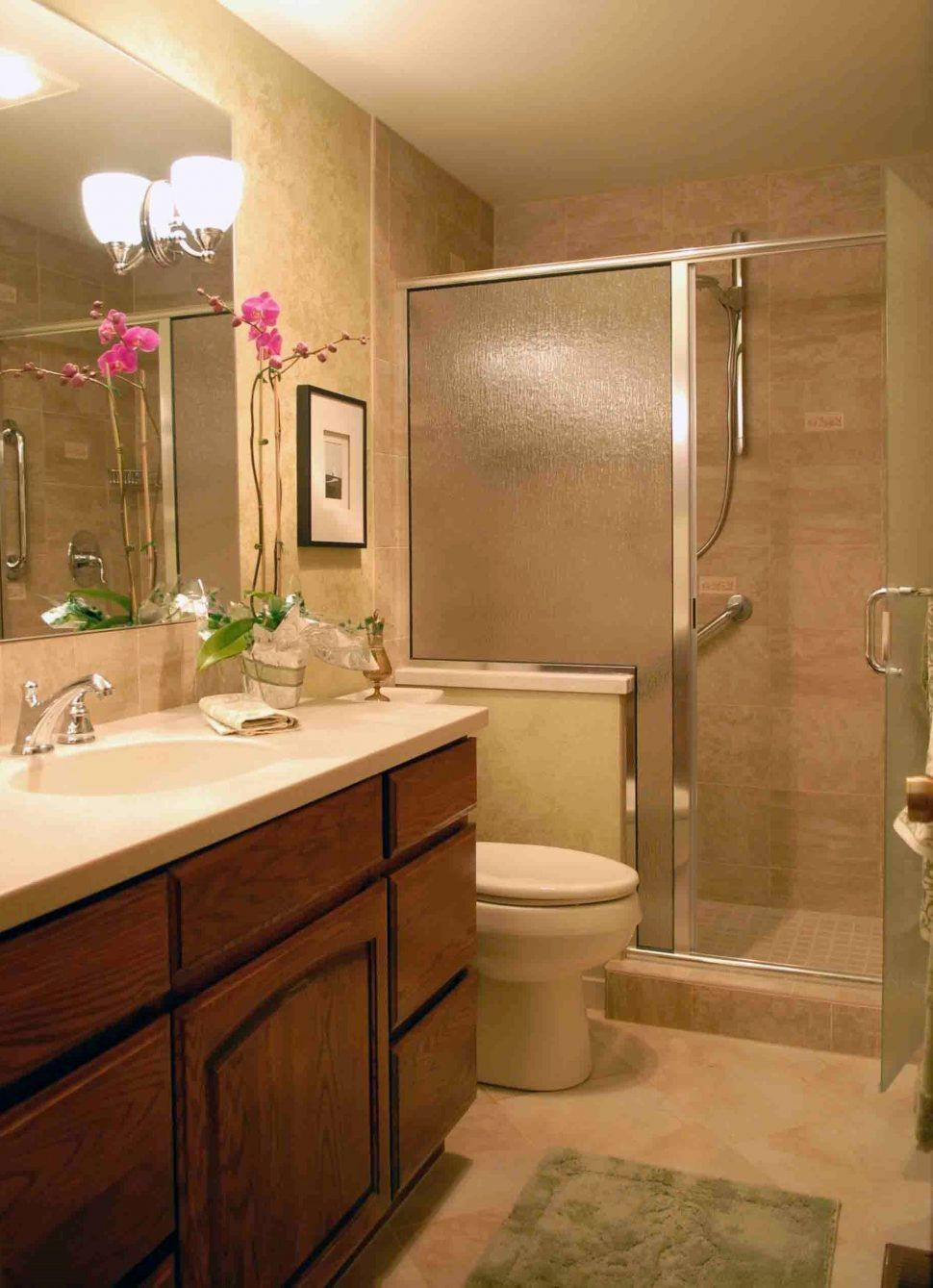 100 Small Bathroom Walk In Shower Designs  Favorite Interior Unique Small Bathroom Walk In Shower Designs Decorating Inspiration