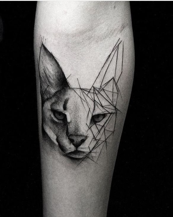 Kamil Mokot Katzentattoo Schriftarten Fur Tattoos Beliebte Tattoos