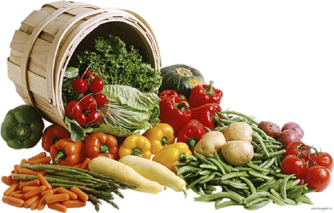 Verduras Legumbres Hortalizas Material Para La Escuela Frutas Y Verduras Alimentos Alimentacion Saludable