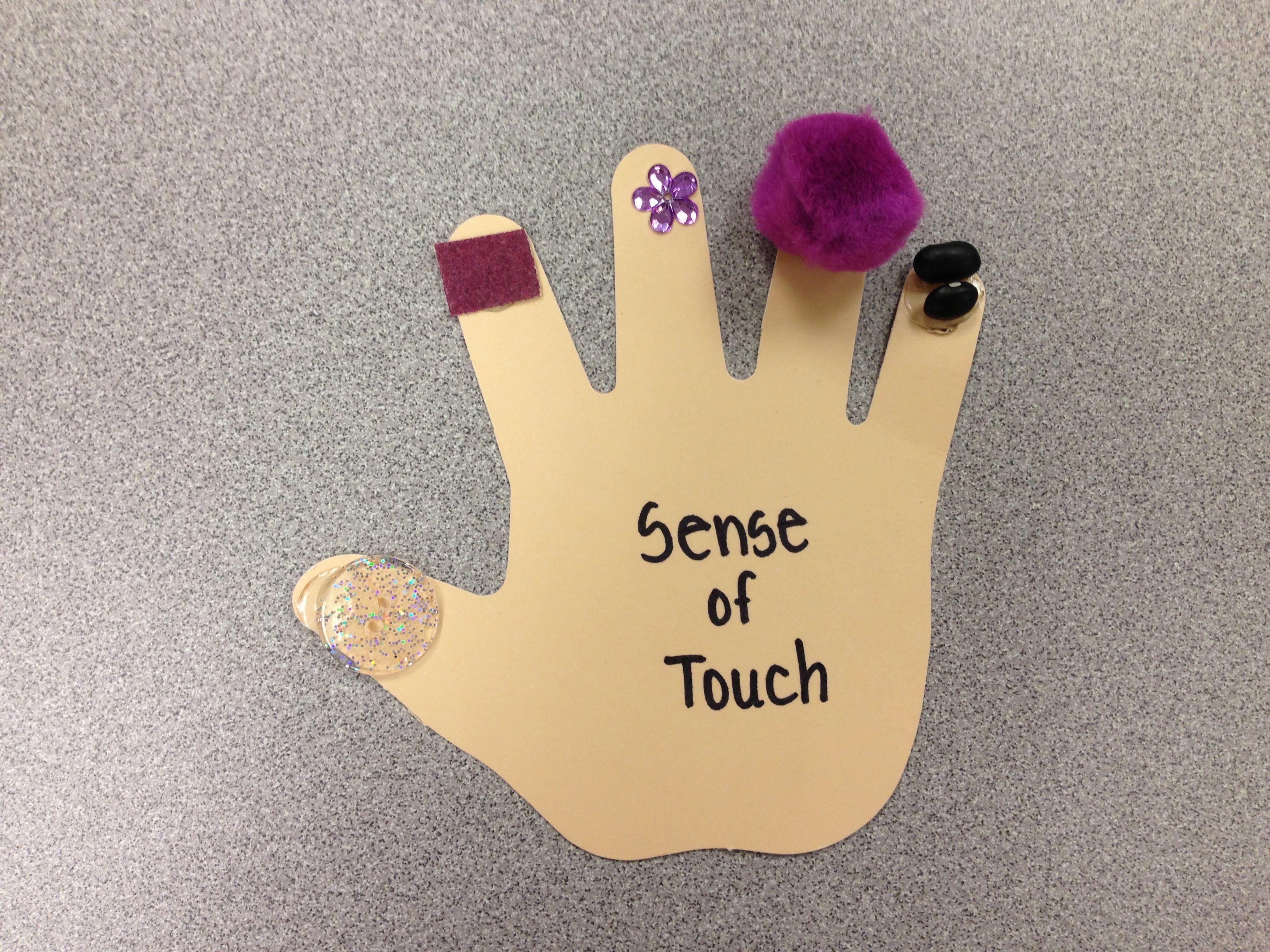 Five Senses Craft Sense Of Touch For More Five Senses