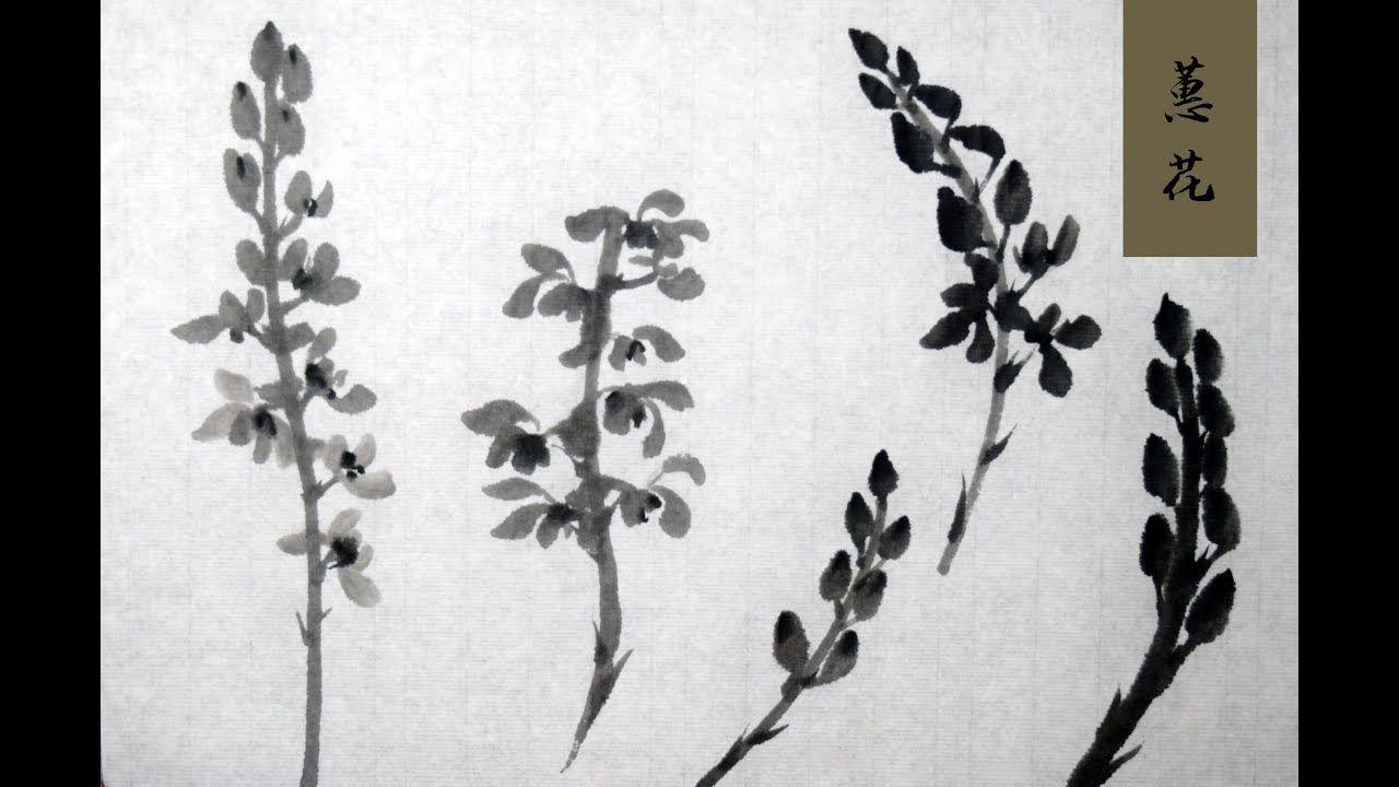蕙花基础chinese Orchid Flower Basic In 2020 Orchid Flower Orchids Chinese Art