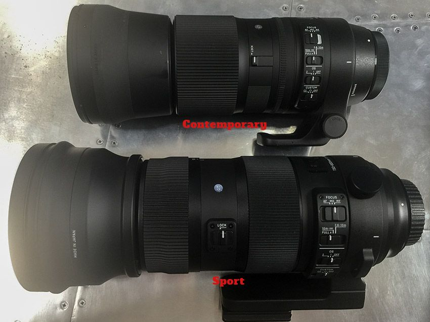 Sigma 150 600mm Sport Vs Contemporary Full Comparison And Review Improve Photography Sigma Photography Gear