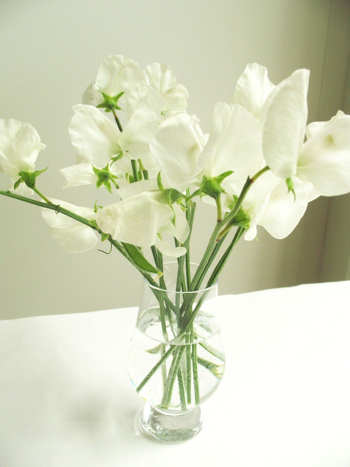 White Sweet Pea Flowers Google Search Wedding Flowers