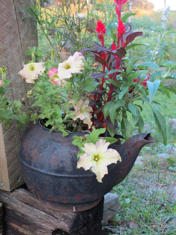 Antique Rusty Cast Iron Repurposed Recycled Salvaged Tea Kettle Planter