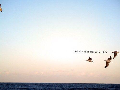 I Wish To Be As Free As The Birds It S In One S Spirit Just Happy Quotes Bird Quotes Flight Quotes