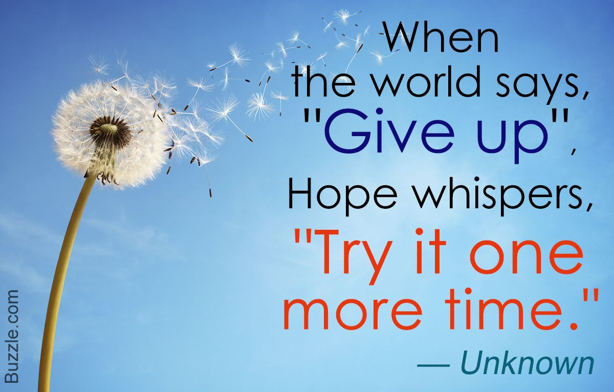 Never Give Up Quotes Quote About Hopeanonymous Author  Quotable Quotes  Pinterest