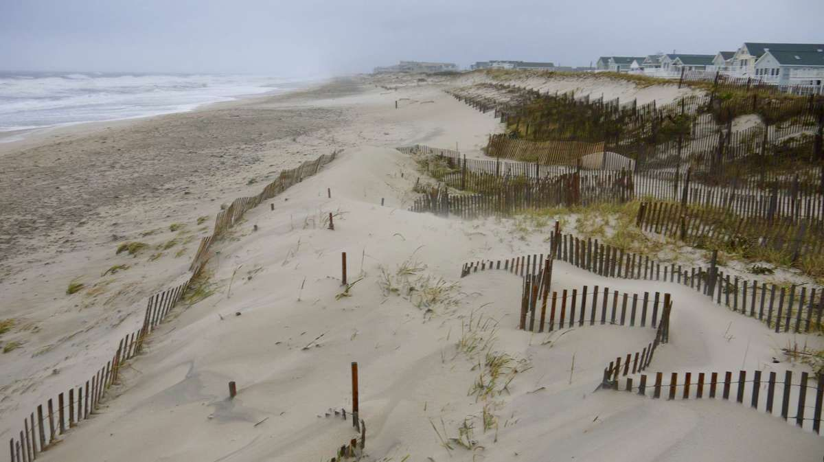 Protective dune system grew taller and wider in an Ocean ... on Dune Outdoor Living id=33880