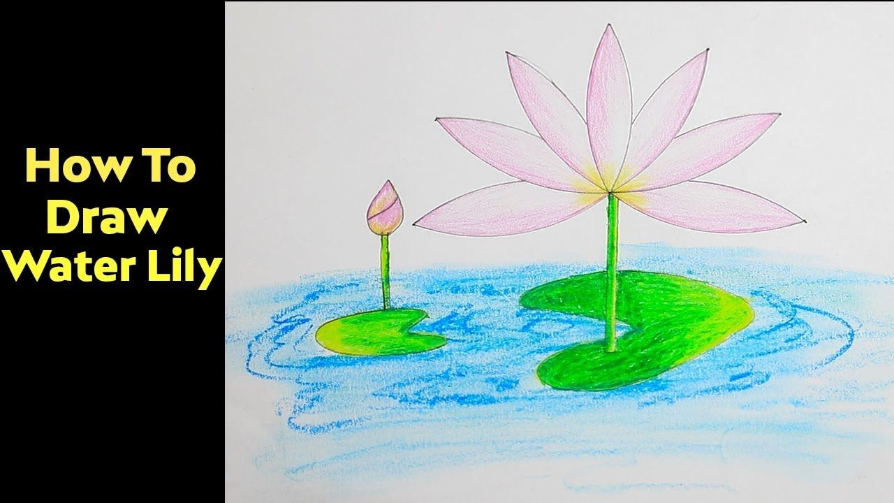 How to draw a water lily step by step very easy drawing for kids how to draw a water lily step by step very easy drawing for kids izmirmasajfo