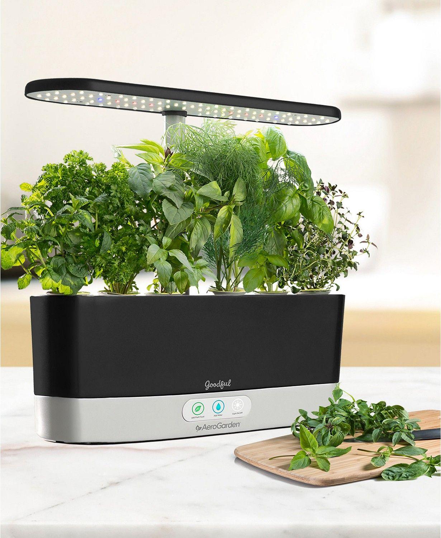 Goodful By Aerogarden Harvest Slim Countertop Garden Gourmet