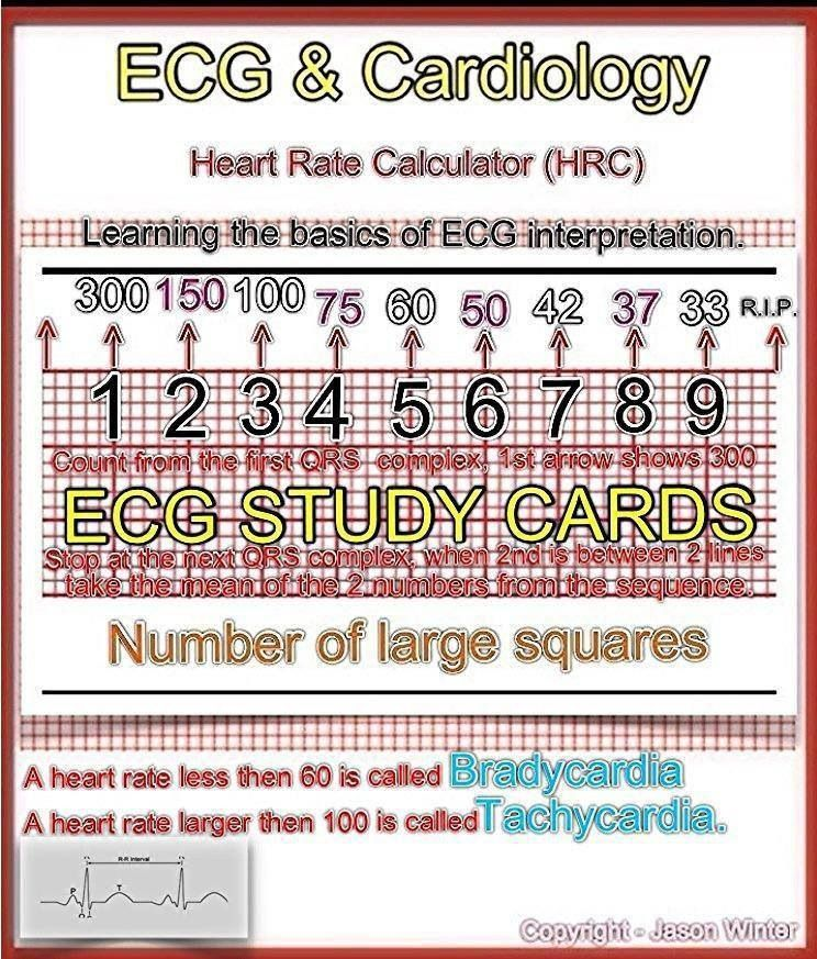 08 read ecgs like an expert basic ekg interpretation | ekg.