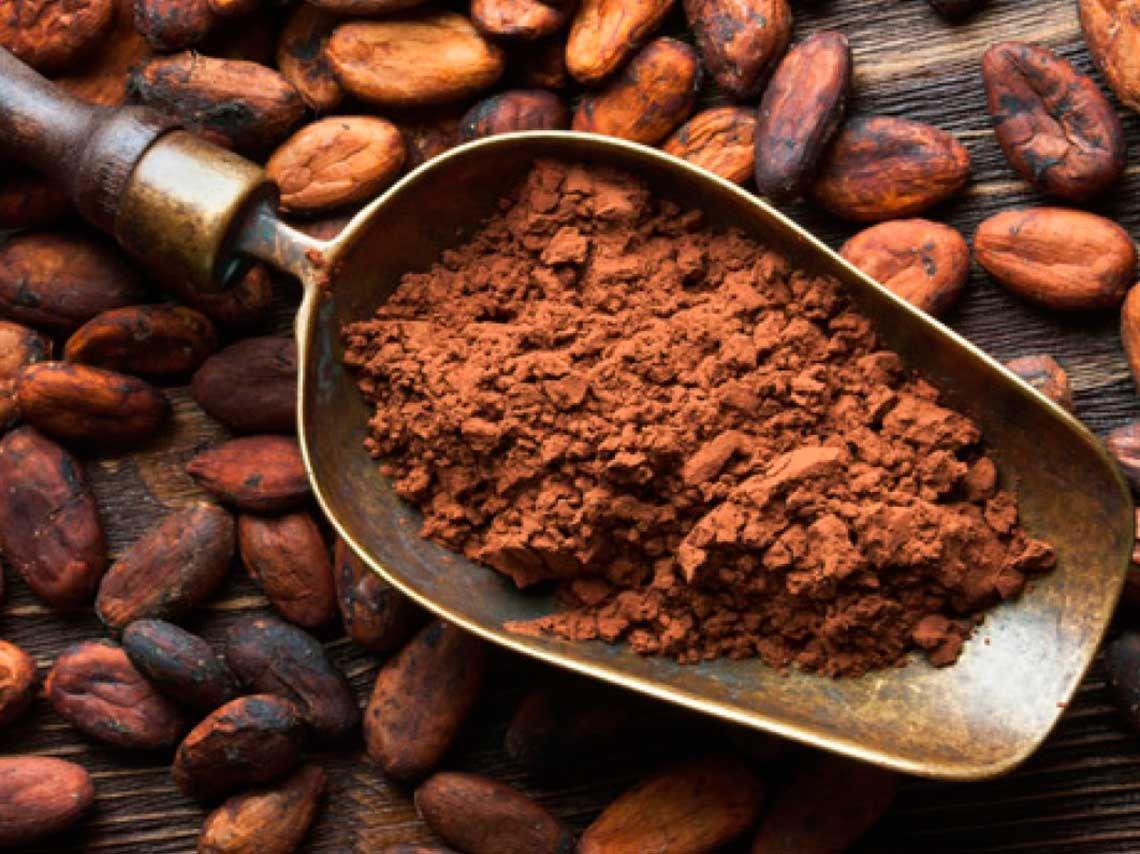 Asiste A Una Experiencia Sensorial Y Deliciosa En El Sonido Del Cacao Recetas De Comida Para Perros Recetas De Comida Alimentos Para Mascotas