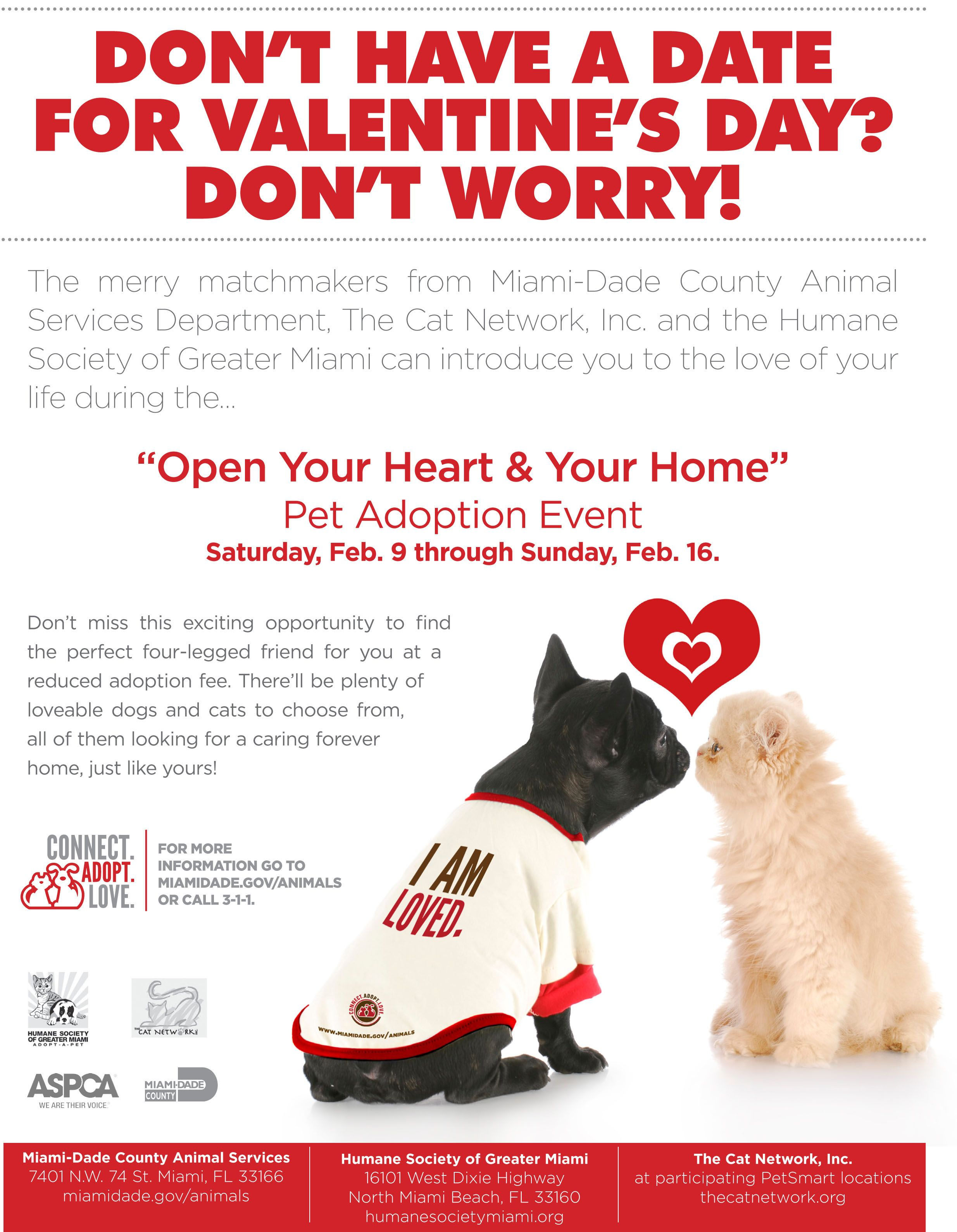 Need A Date For Valentine S Day Beyond Breed Pet Adoption Event Day Dog Adoption