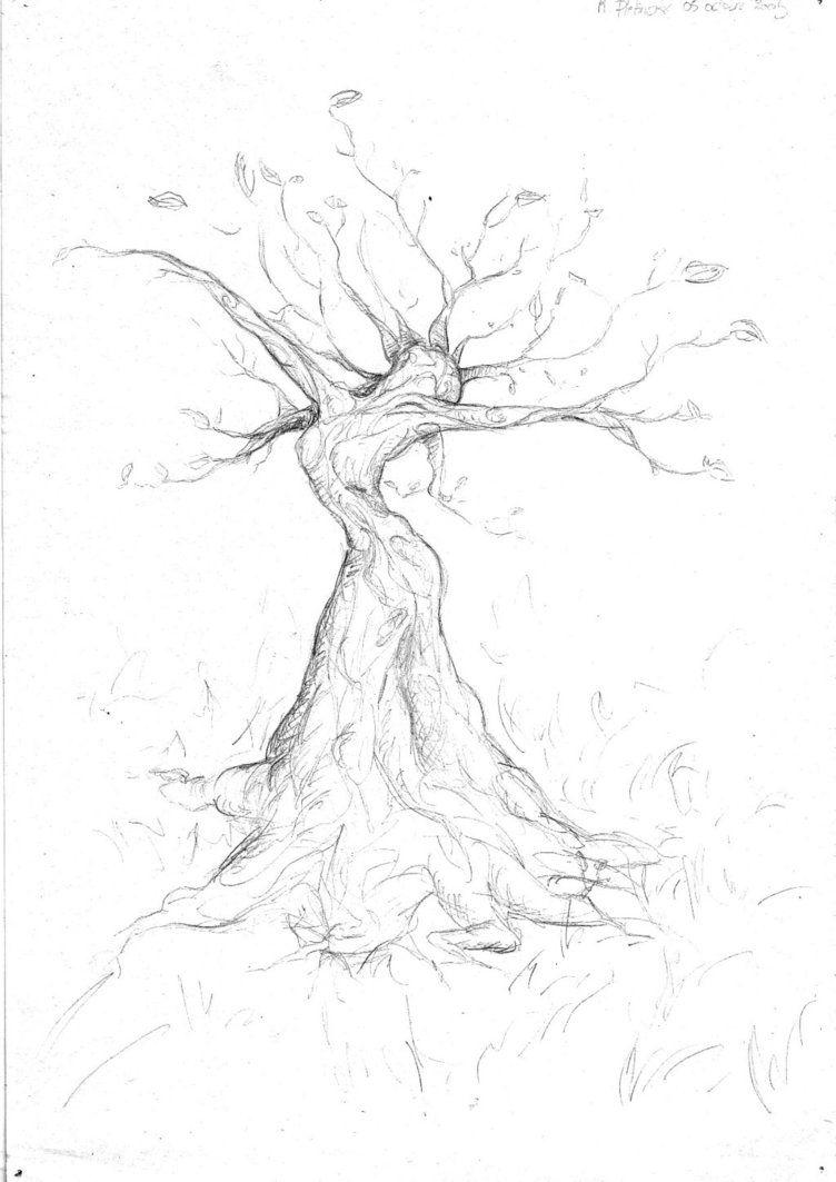 Woman Tree Tree Drawing Tree Art Art Painting