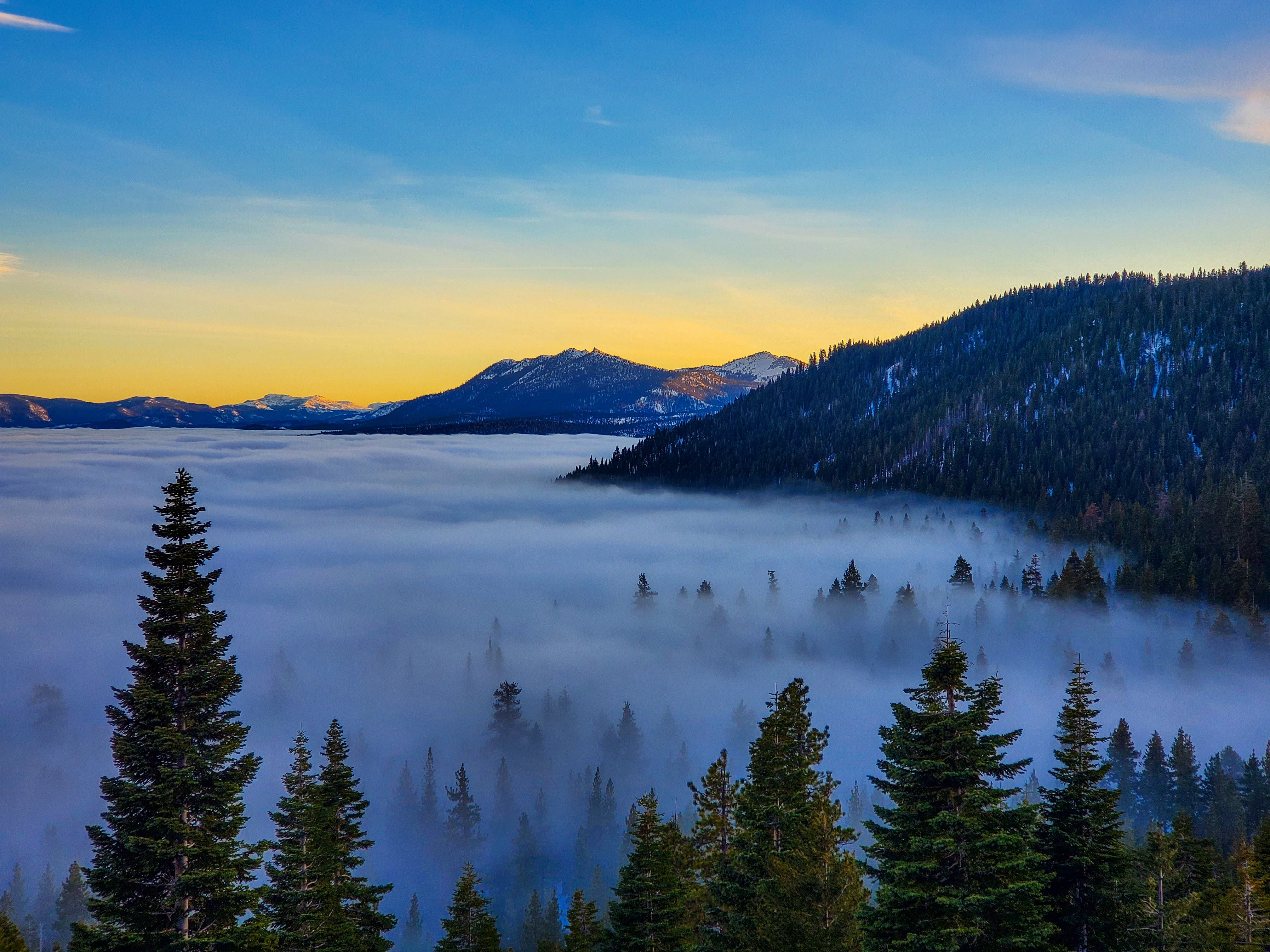 Tahoe City Real Estate In 2020 Lake Tahoe