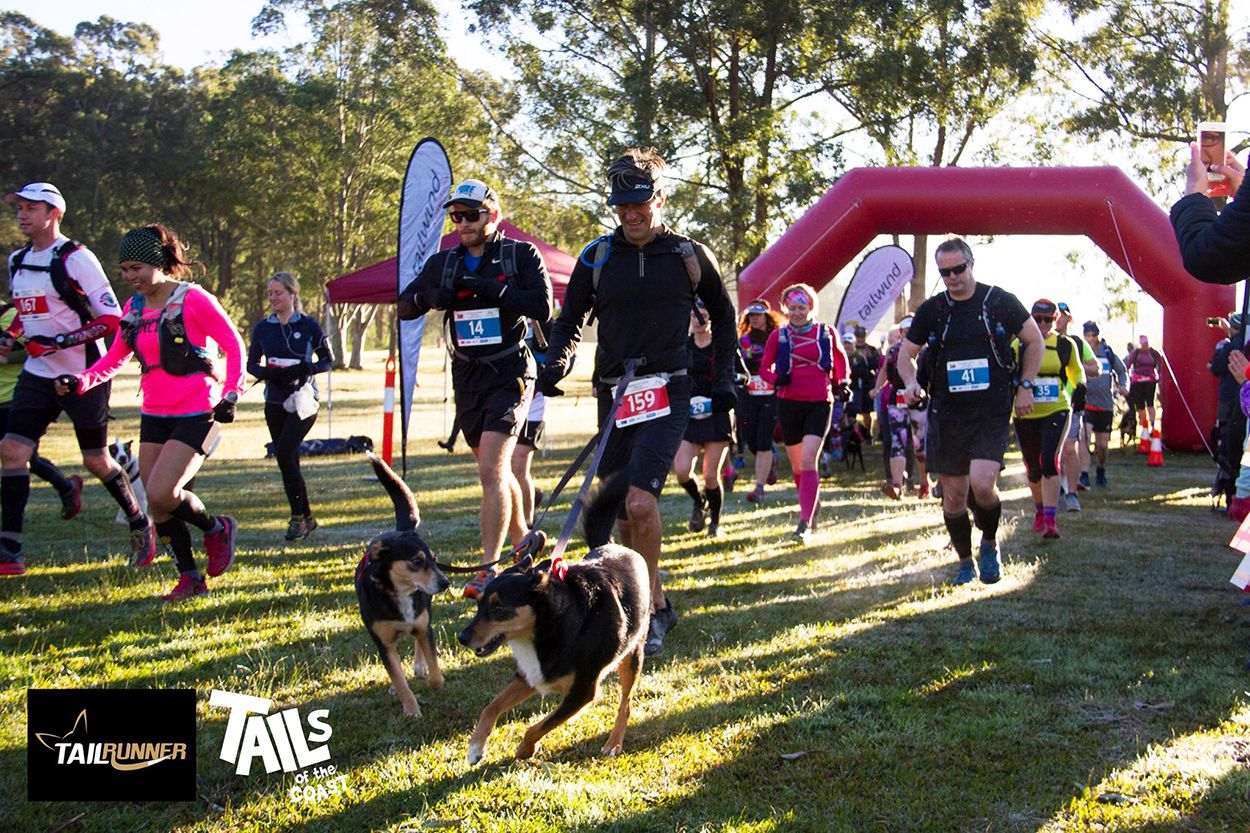 Riverwood Downs Trail Run July 28 29 Australian Dog Lover Dogs Day Out Dog Lovers Downs