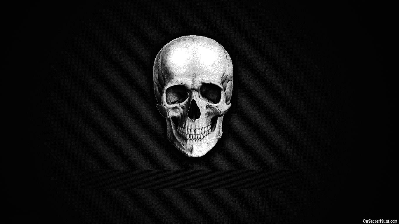 Funny Skeleton Wallpaper Best HD Images of Skeleton HD