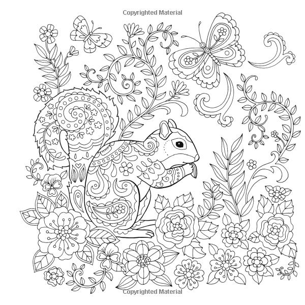 Amazon Com Super Cute World A Coloring And Creativity Book 0035313668135 Jane Maday Bo Johanna Basford Coloring Book Animal Coloring Pages Coloring Books