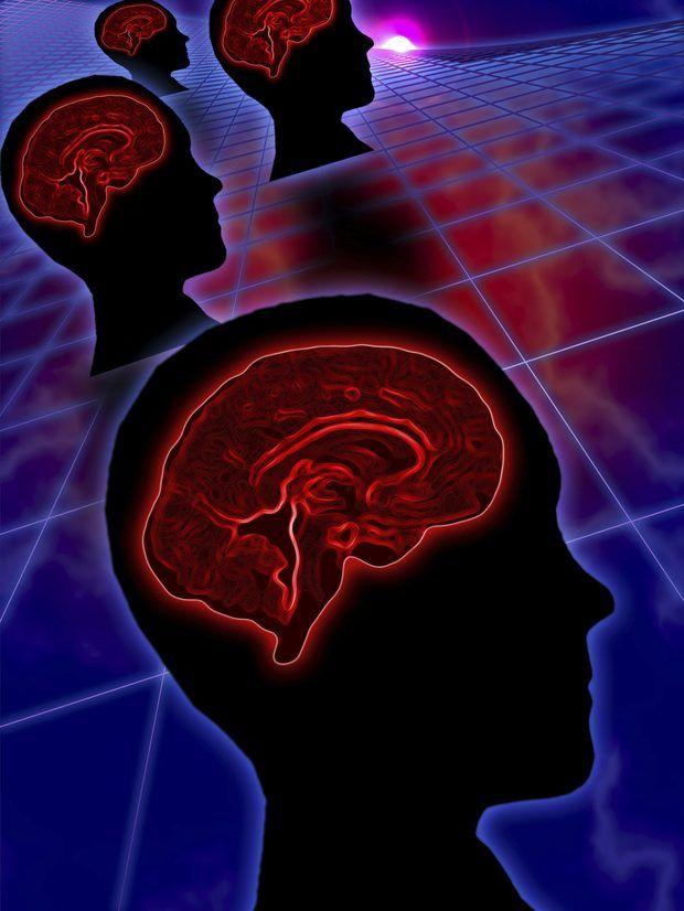 Dieta para estimular el funcionamiento de la glándula pituitaria ...