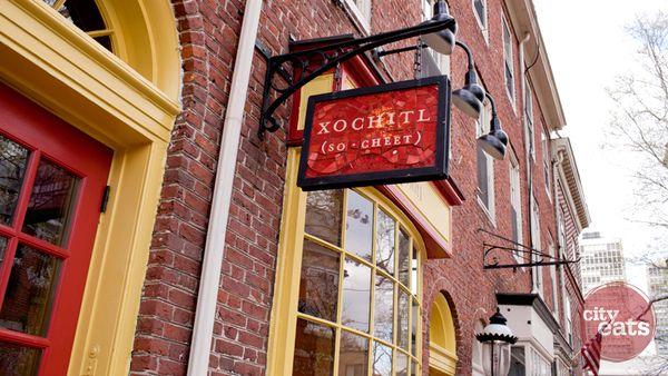 Xochitl Philly Restaurant Cat City Philly Restaurants City