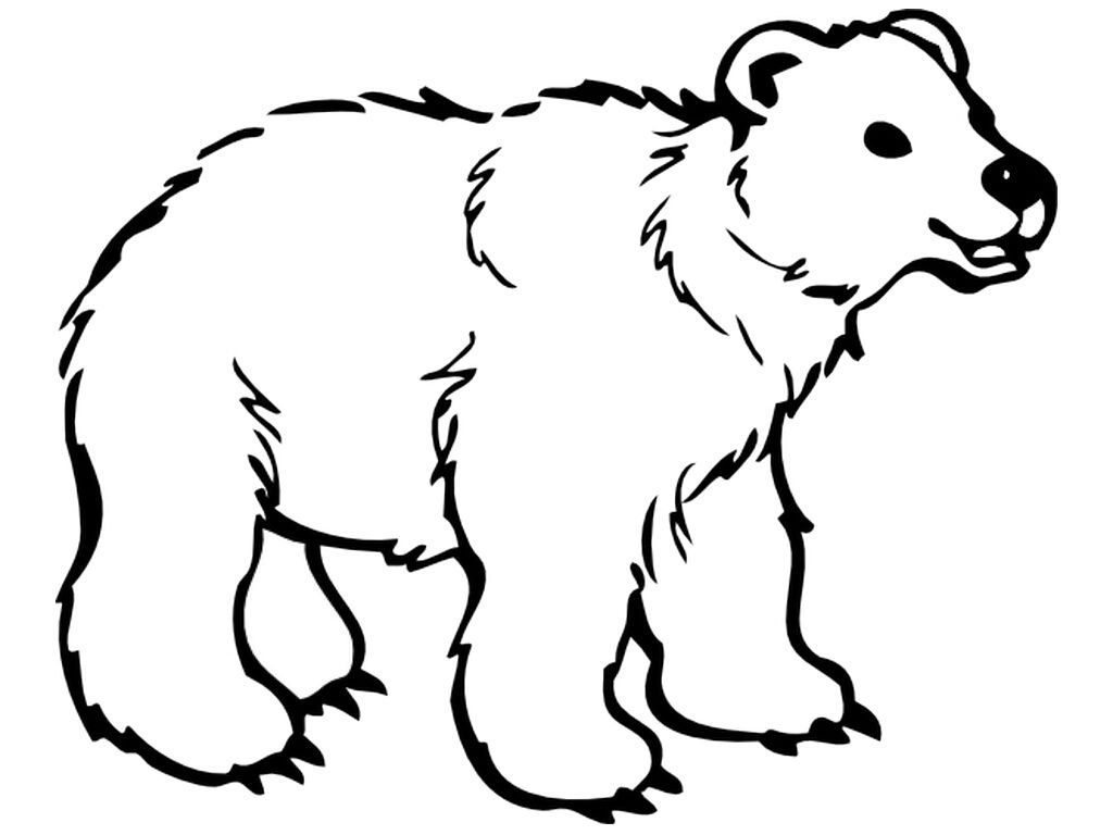 Bear Template Quilting Templates Stencils Pinterest Bear