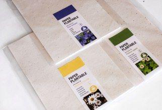 Papel con semillas A4 sin imprimir más de 100uds