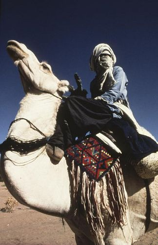 Agadez, Niger | Chamelier touareg
