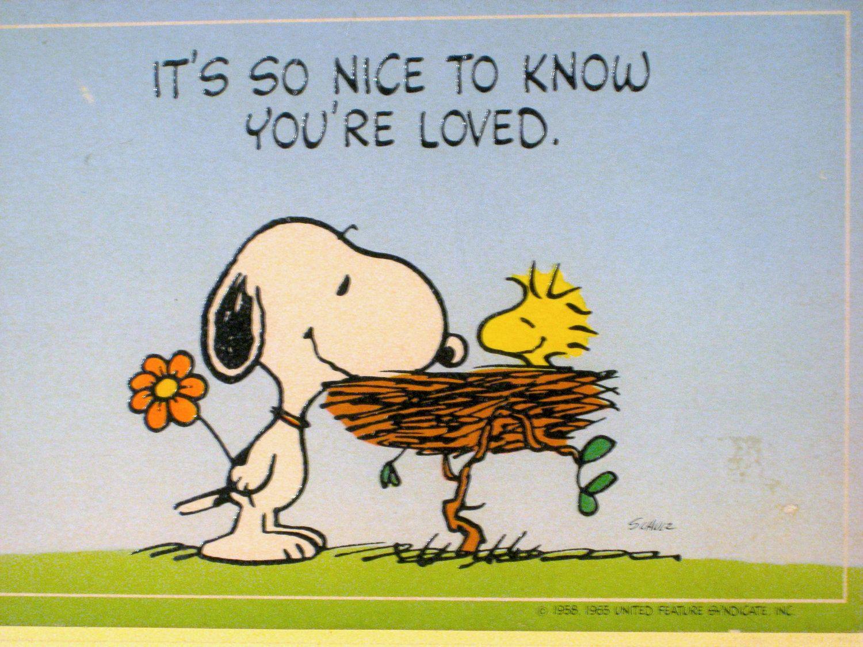 Woodstock quot peanuts quot desktop wallpaper - Snoopy And Woodstock Google Search