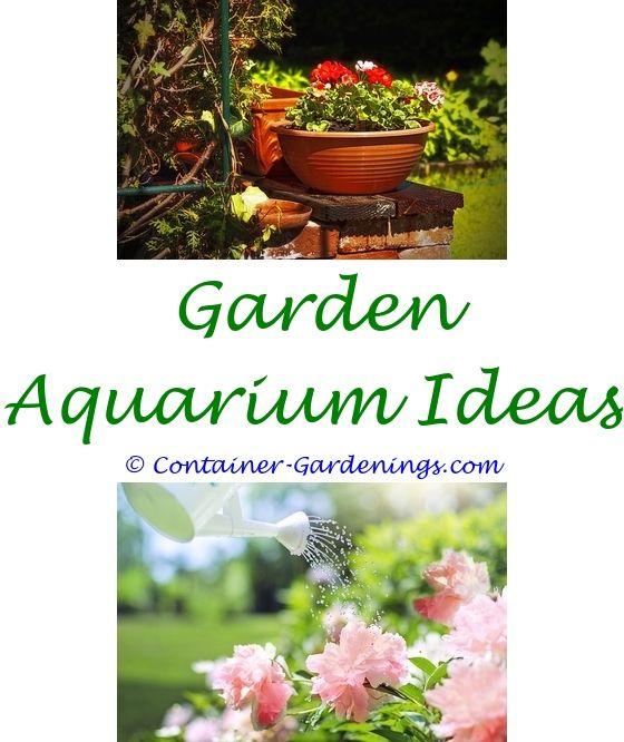 Gardening Direct   Low maintenance garden, Garden ideas and Garden ...