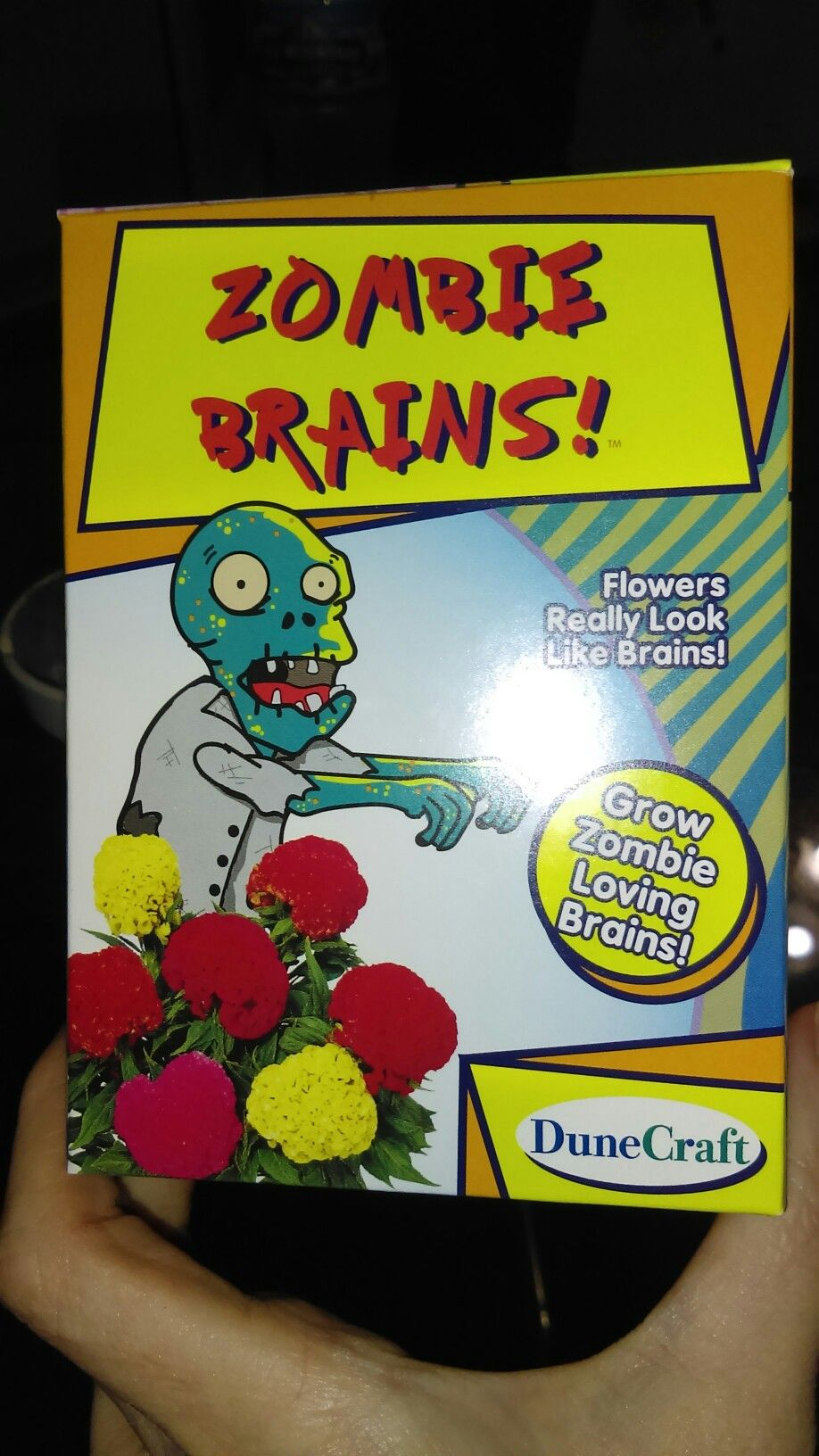 Pin by carmen Aune on Zombie Anime Zombie brains, Zombie