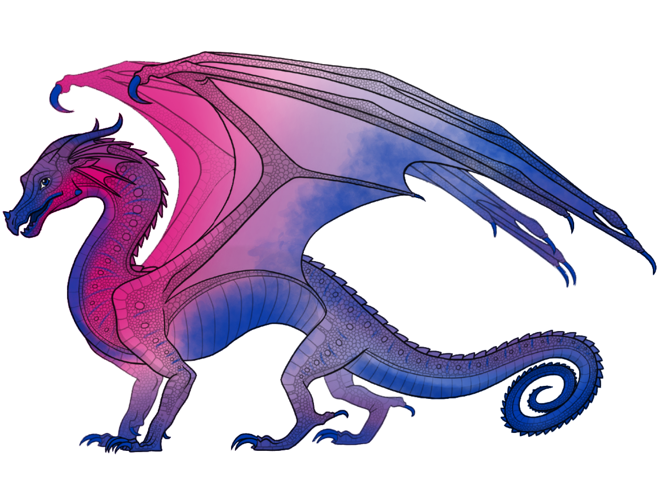 Wings Of Fire Color Edits Complete In 2020 Wings Of Fire Wings Of Fire Dragons Fire Art